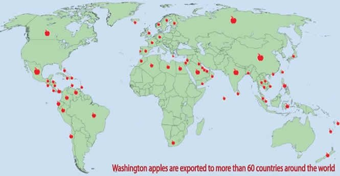 applemarketmap