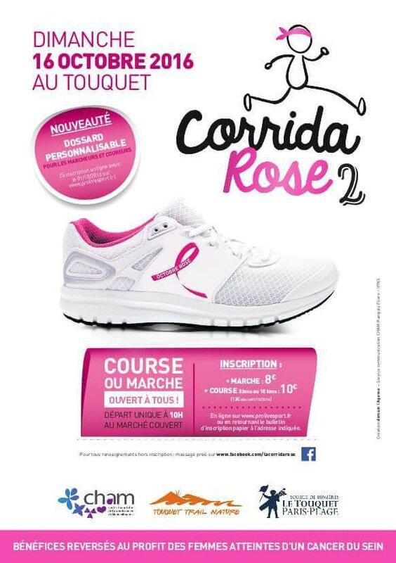 affiche corrida rose_9000087435139556142_n