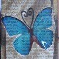 137 - Papillon bleu Partie chez Anne le 19 09 06 (France)