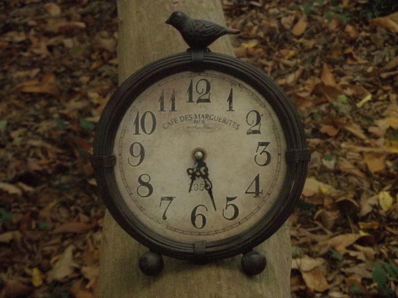 le temps passe ....