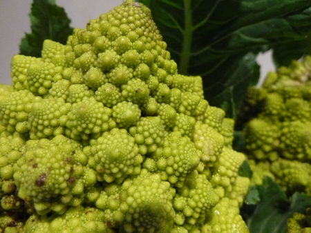 6_CHOUX_ROMANESCO__13_