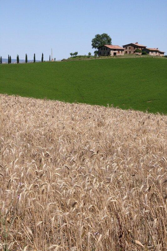 Toscane 07