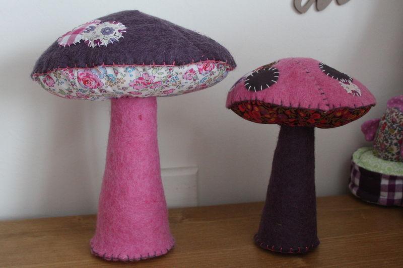encore des champignons