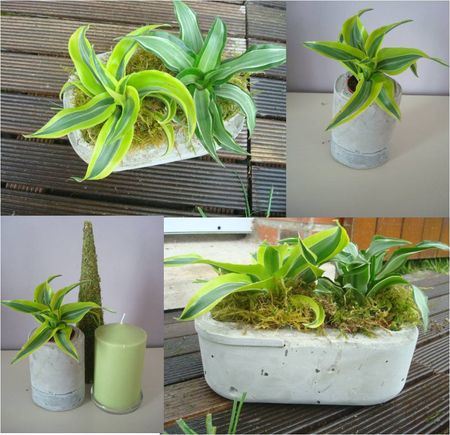 Faire soi m me un cache pot en ciment d fi d co jardin for Pinterest deco jardin