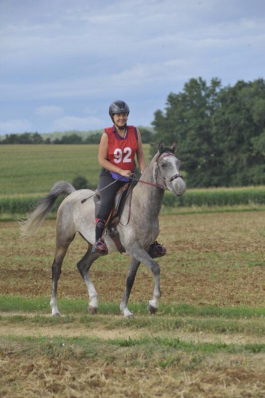 MAINZAC jeunes chevaux 2017 040s