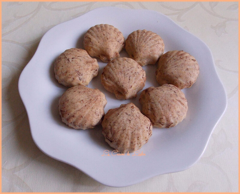 coquillages-coco-mirabelles