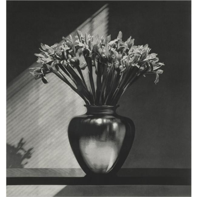 Robert Mapplethorpe S Two Silver Prints Amp Three
