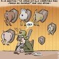 Non à la chasse !!!