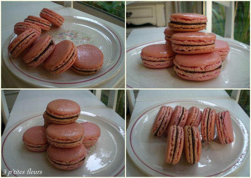 MACARONS CHOCO ET PATE A SPECULOOS