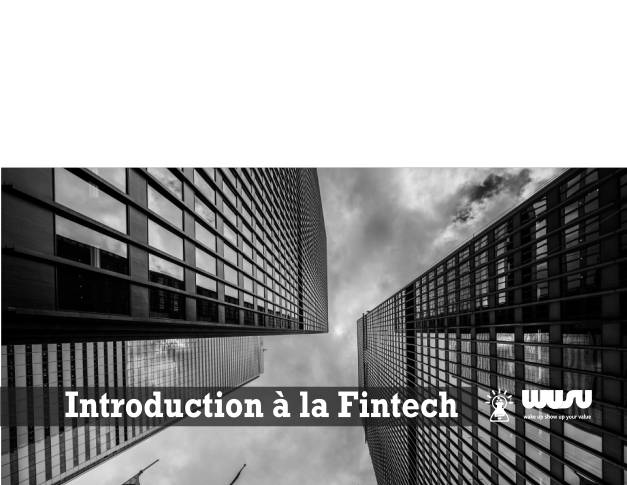 introduction-fintech-wusu-blog-2017