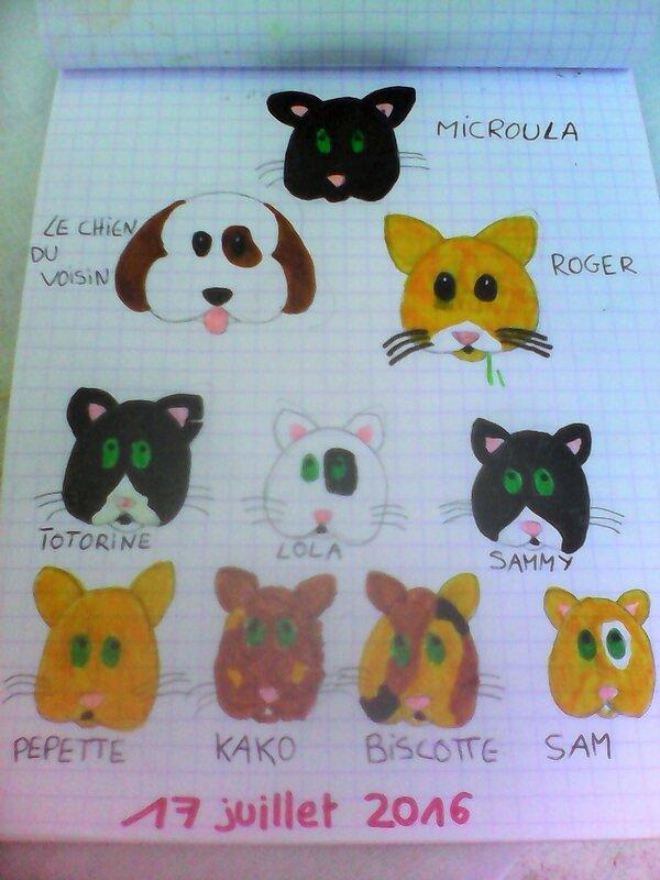 journee_du_17_juillet_les_chats_Nell