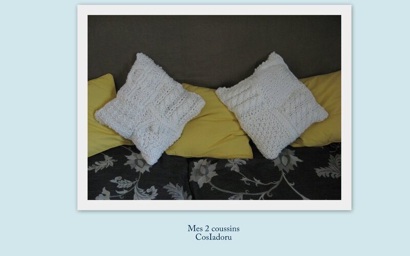 coussin N°2c