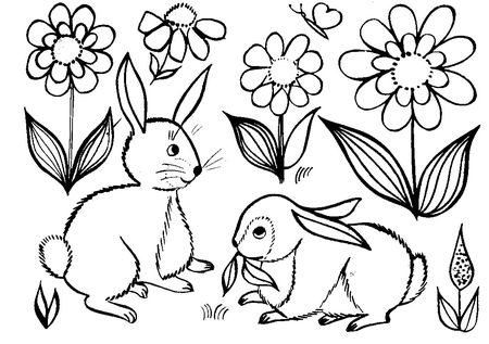 Lapin_noir_et_blanc_black_and_white_bunny_coloring_coloriage