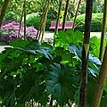 Jardin Poterie Hillen 12061646