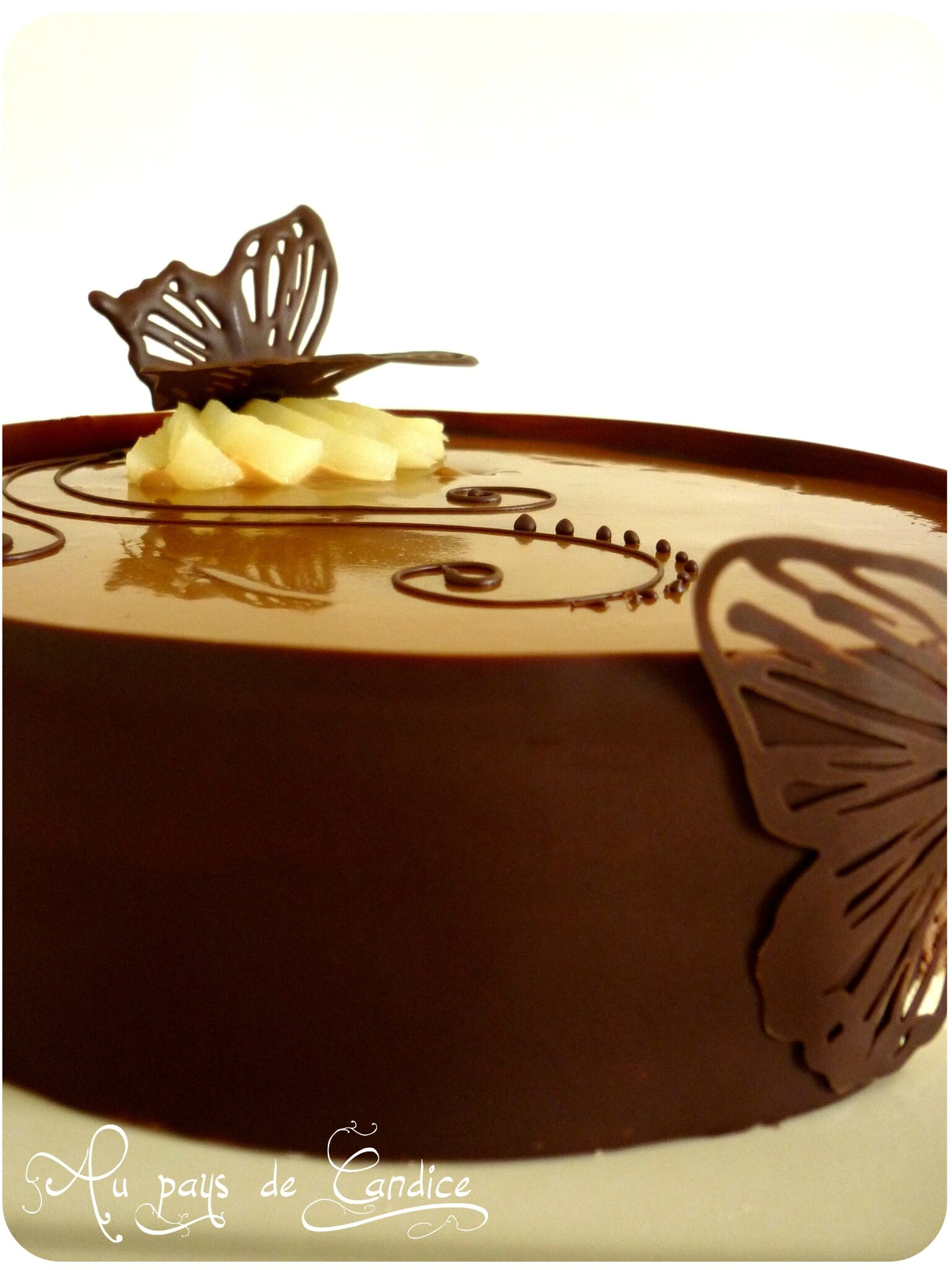 Bavarois chocolat poires caramel au beurre sal au for Decoration en chocolat