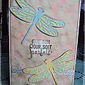 Cartes libellules