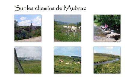 sur_les_chemins_de_l_Aubrac
