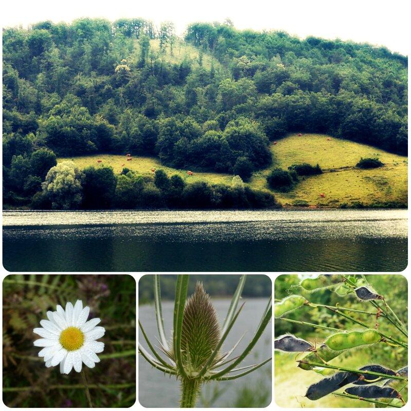 lac mondely