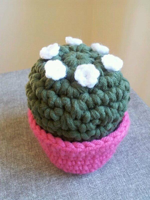 gros cactus grosse laine 3