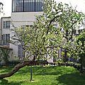 Jardin Musée Montmartre4- Marimerveille