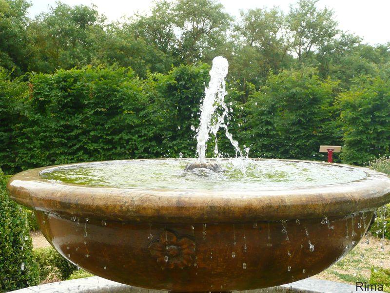 Dans le jardin de Salles de Villefagnan.Charente.