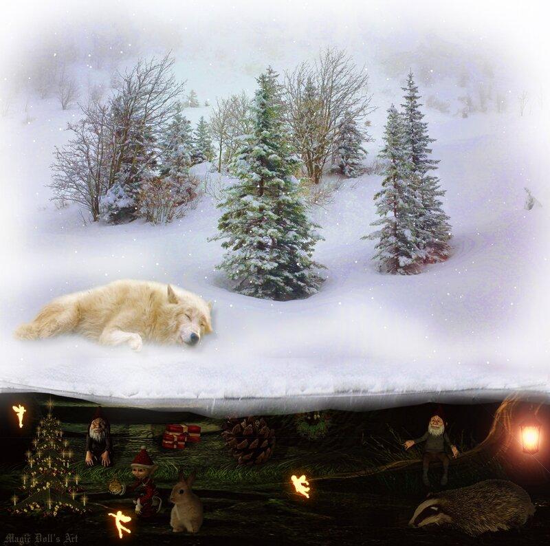 Noel chez les Lutins et fées et gnome