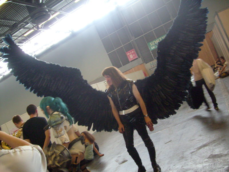 black_wings guy