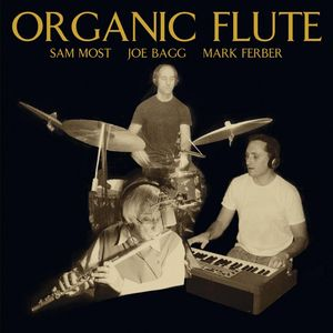 Sam_Most_Joe_Bagg_Mark_Ferber___2010___Organic_Flute__LiquidJazz_