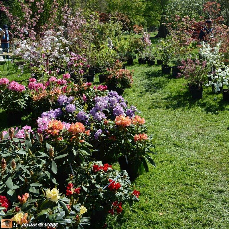 Parc-Floral-16