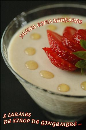 Panna_cotta_rhubarbe_5