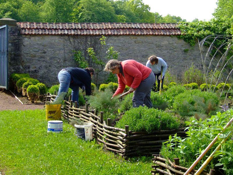 Mise en uvre du potager et implantation d 39 un nouveau for Entretien d un jardin potager