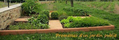 Mon petit jardin de cur promesses d 39 un jardin oubli - Bordure de jardin ancienne en terre cuite ...