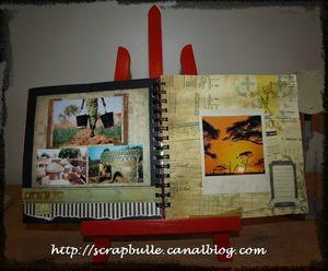 scrapbulle-AFRICA-6