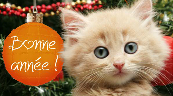 Bonne annee 2016 les petits plats de mimimarie - Belles images bonne annee ...