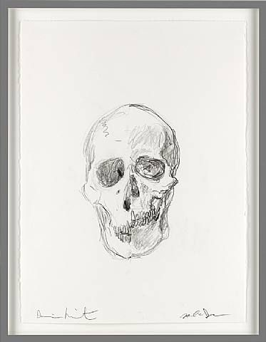 Michael Joo, Untitled skull drawing (1), 2006