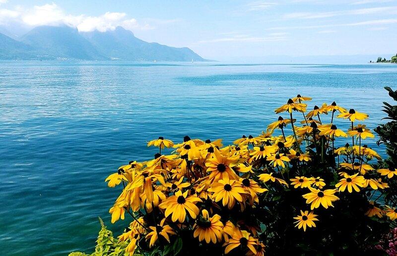 Montreux, lac Léman et fleurs
