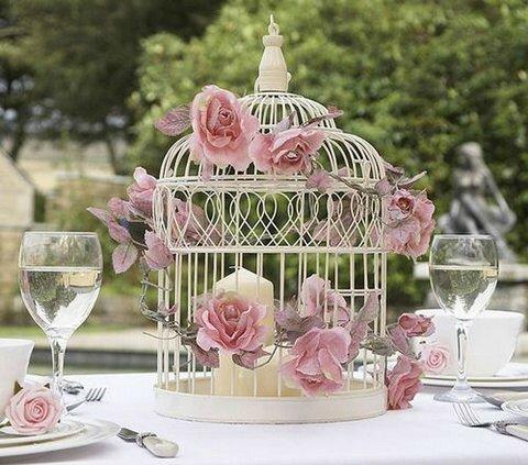cage oiseaux et fleurs