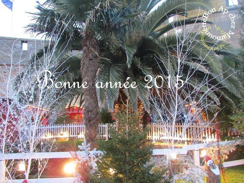 bonne année 2015 -