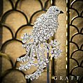 Graff. diamonds precious bird brooches