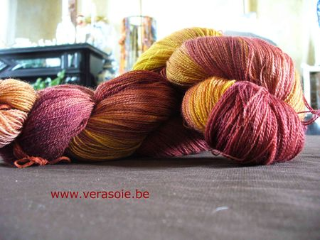 BFL_orange_rose_01