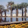 cannes jardin du port