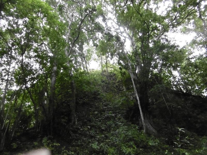Site Tikal (16)