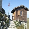 Le jardin alpin des rochers-de-naye - la rambertia