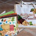mini album Dame de Kit automne 1/11/2010