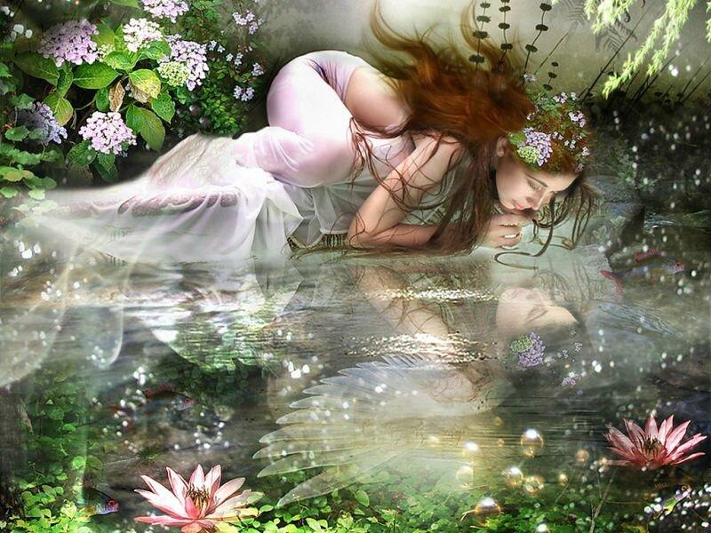 Fairywen 9