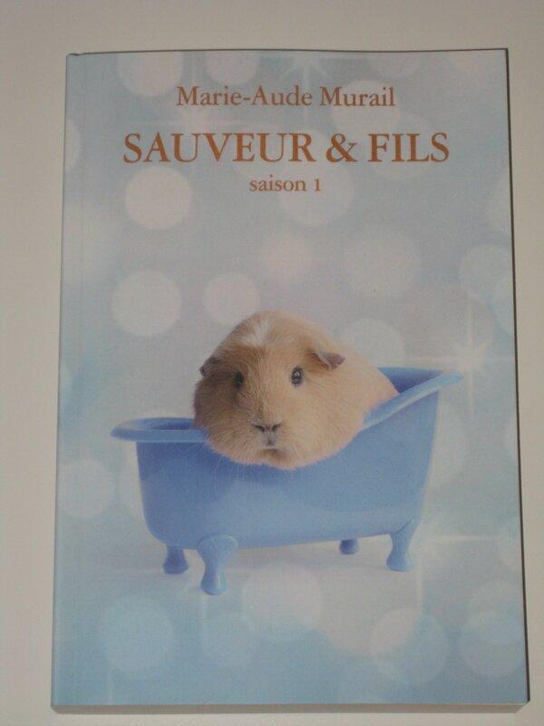 Sauveur & fils - saison1