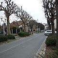 Noisy, les arbres et les rues.