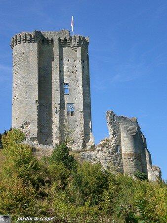 Lavardin_le_chateau_2