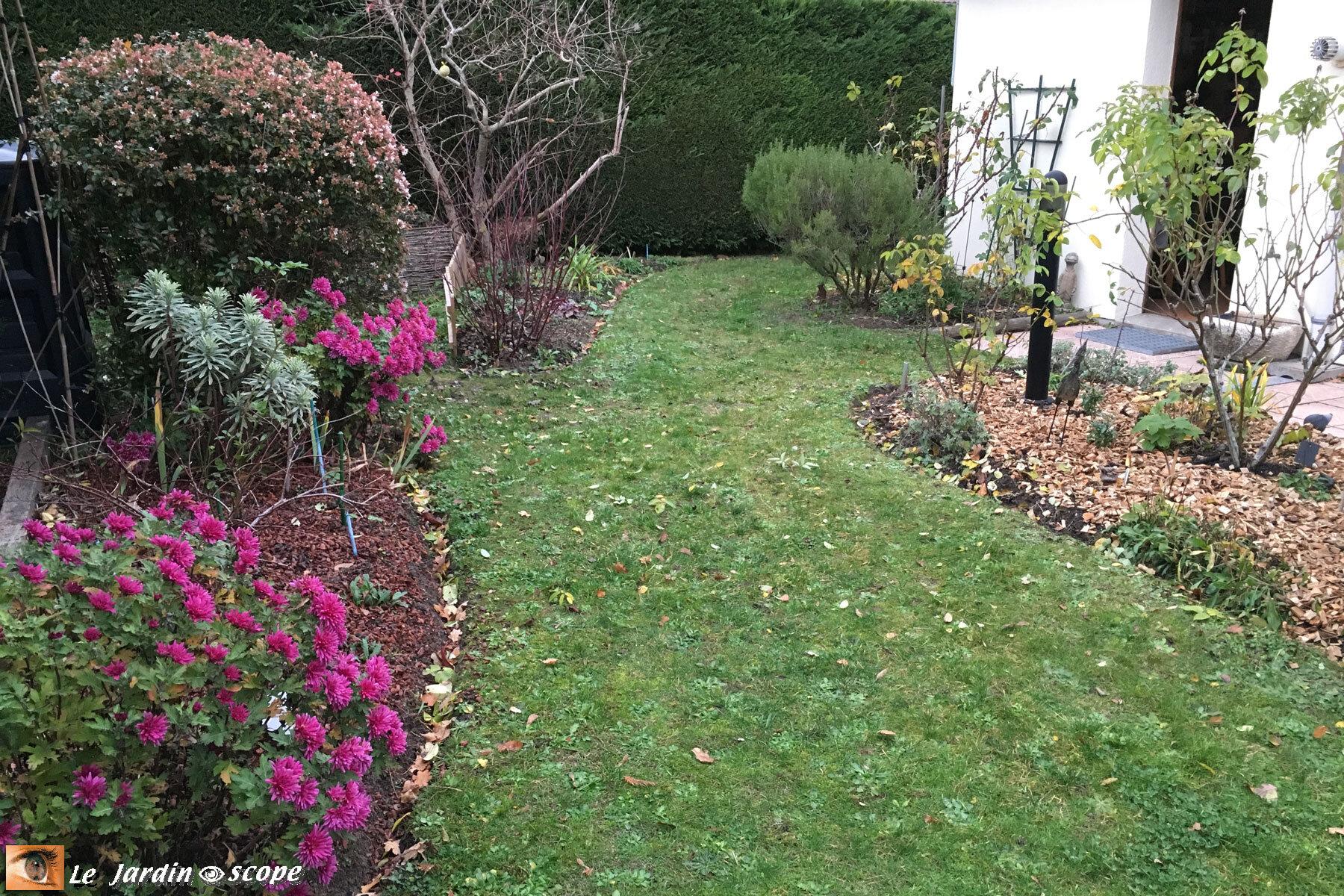 tour de mon jardin en novembre le jardinoscope toute la flore et la faune de nos parcs et. Black Bedroom Furniture Sets. Home Design Ideas