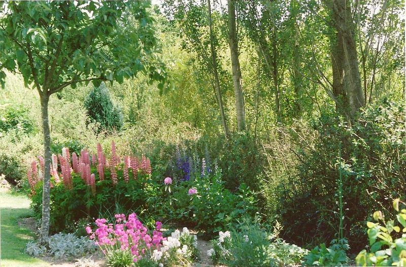 Historique de mon jardin 1 5 le cottage de gwladys for Au jardin de ma grand mere